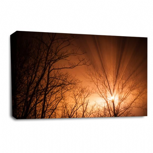 Sunset Landscape Wall Art Picture Golden Sky Forest Print